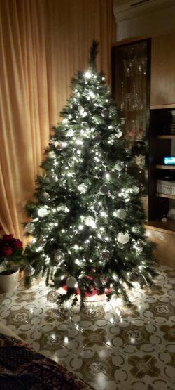 Natale è ... amore familiare