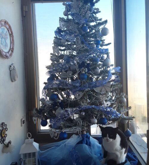 A Pippa piace tanto l\' albero di Natale.....