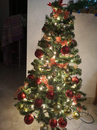 Natale è famiglia, convivio e condivisione