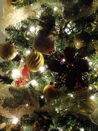Natale è famiglia fra sfavillanti lucine