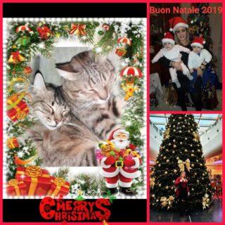 Il Natale per me significa ️FAMIGLIA️